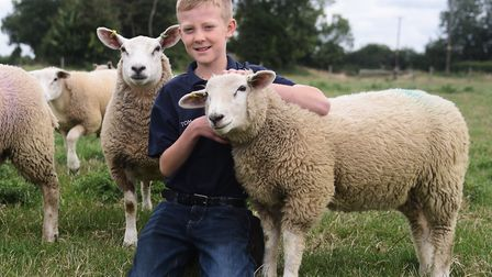 Tom Alexander, 11, with some of his flock of Texel cross sheep, including friendly Benny who Tom bot