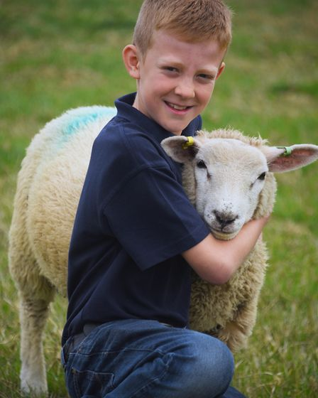 Tom Alexander, 11, with Benny, one of his flock of Texel cross sheep, who he bottlefed, at his home