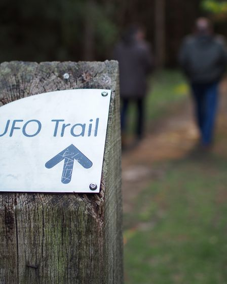 See what you can find along the UFO Trail in Rendlesham Forest. Picture: TOM POTTER