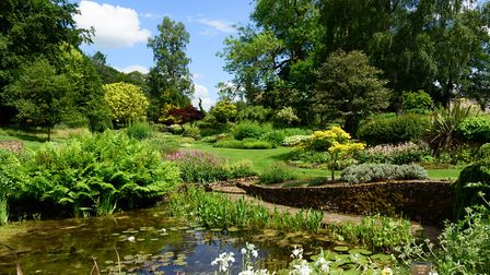 The stunning gardens at Bressingham steam museum. Picture: Barry Pullen.