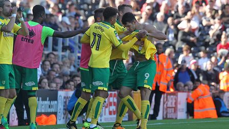Nelson Oliveira made his feelings clear after his Norwich City equaliser at Fulham. Picture: Paul C