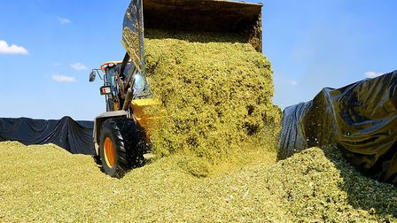 Agricultural insurers have urged farmers to check their silage clamps are not leaching pollutants in