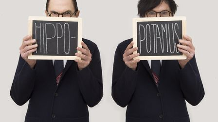 Musical mavericks Sparks � aka siblings Ron and Russell Mael � are bringing their latest album Hippo