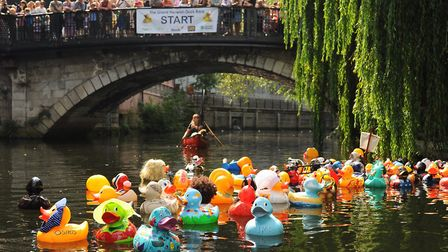 The Grand Norwich Duck Race for Break. The ducks make their way from the start of the corporate duck