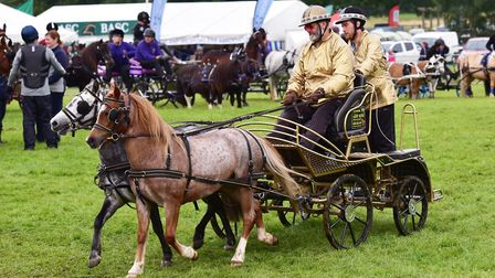 Scurry racing at the Sandringham Game and Country Fair.Picture: Nick Butcher