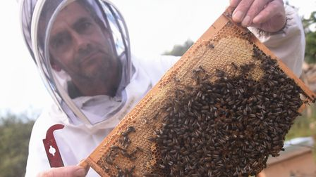 Beekeeper Simon Greenwood with some of his bees from other hives he has left after thieves stole hiv