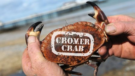 Cromer Crab protected food. Photo: Anthony Kelly/Annette Hudson