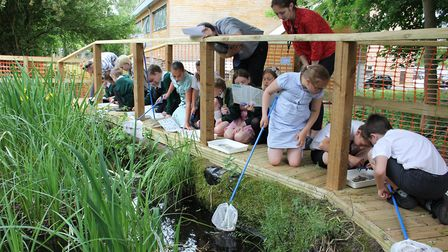 Pupils from IES Breckland school, Brandon, pond dipping in their restored pond as part of the Breaki