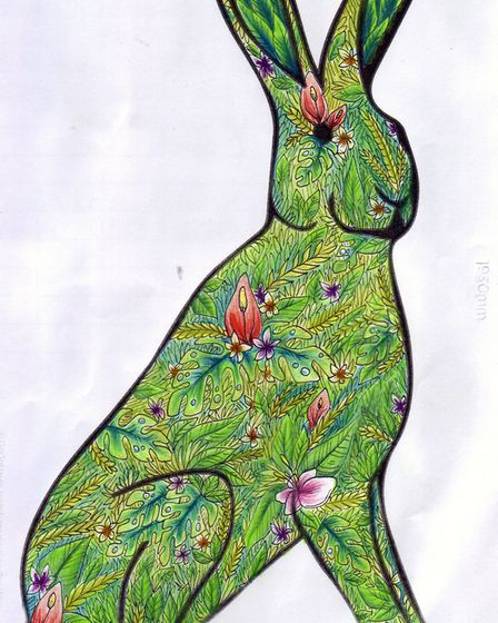 GoGoHare competition entry: Kyra Cornish, aged 15 from Hellesdon.