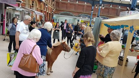 A dementia coffee morning held at Norwich station, with special guest Jack the Shetland pony. Photo: