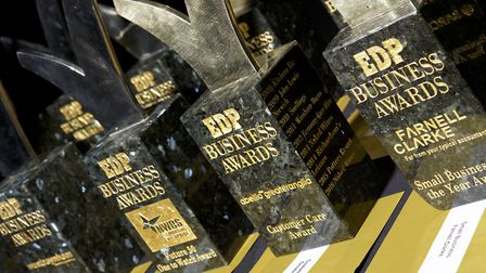 Norwich, Norfolk. The EDP Business Awards at the Royal Norfolk Showground 2016. Picture: MARK BU