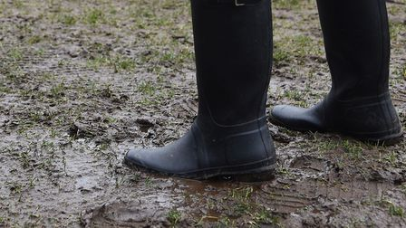 King's Lynn Town's fixture at Gosport Borough was called off. Picture: Archant