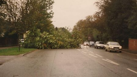Trees and branches spread across Newmarket Road in Norwich after the night of the storm. Picture: DA