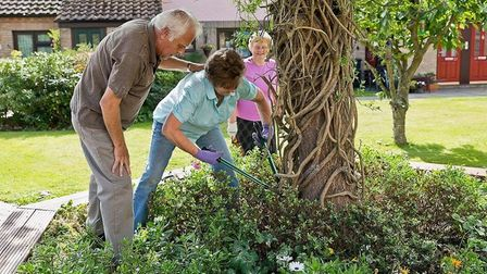 Residents taking part in gardening as part of a The Still On The Go project to get older people movi