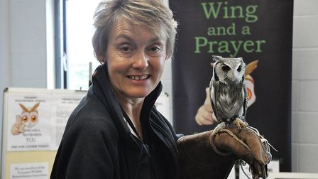 The Easton and Otley College will be hosting their annual Wild About Norfolk fair. Picture: Easton a