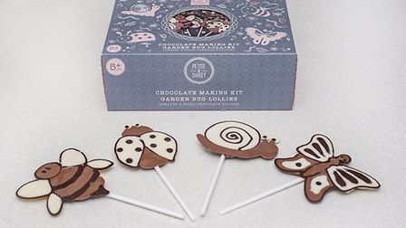 Petite & Sweets garden bugs chocolate lolly-making kits