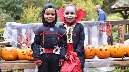 Children at the previous Pumpkin Fest in Brandon (Photo: Lydia Owens Photography)