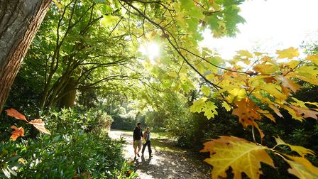 The region is set to see some mild October temperatures . Picture: James Bass