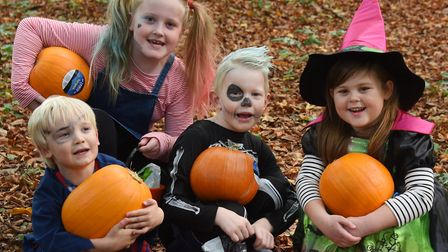 Halloween costumes and pumpkins at the Pumpkin Festival at the Brandon Country Park. From left, Henr