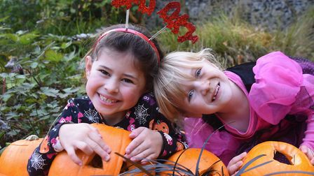 Halloween costumes and pumpkins at the Pumpkin Festival at the Brandon Country Park. Seven-year-olds