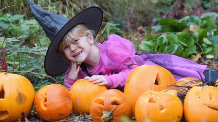 Halloween costumes and pumpkins at the Pumpkin Festival at the Brandon Country Park. Witch, Sophie L