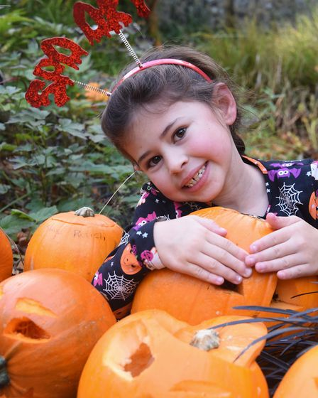 Halloween costumes and pumpkins at the Pumpkin Festival at the Brandon Country Park. Spooky Louise R