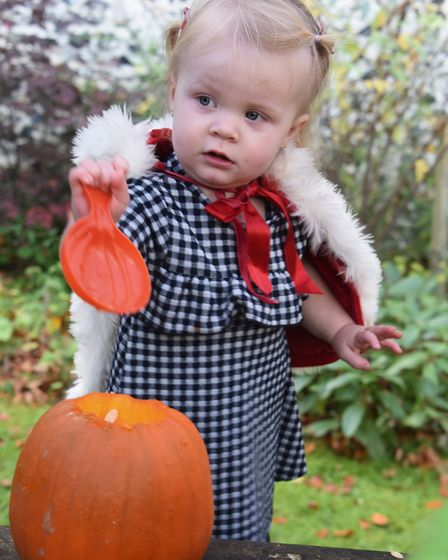 One-year-old Annalise Chrystal ready to scoop her pumpkin at the Pumpkin Festival at the Brandon Cou