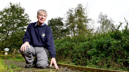 A campaign has been launched to repair the boardwalk at the Norfolk and Suffolk Aviation museum.Mus