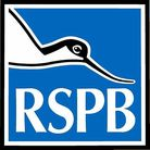 The way we receive information about organisations such as the RSPB is changing.