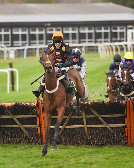 Fire Palace, ridden by Fergus Gregory, in the third race of the day. Picture: Ian Burt