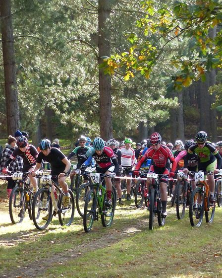 The junior start – winner Kieran Jarvis no 234 - at the Revel MTB races in Thetford Forest. Picture