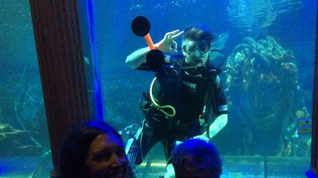 Alex mesmerised by the diver cleaning the shark tank. Picture: Sally White