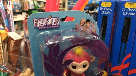 Fingerlings are set to be back in stock at Langleys Toy Shop (Photo: Neil Perry.)