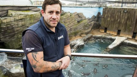 Darren Gook from Yarmouth Sealife Centre by the Penguin enclosure.Picture: Nick Butcher
