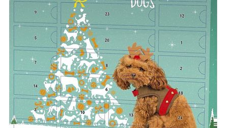Luxury Dog Advent Calendar. Picture: Pets at Home