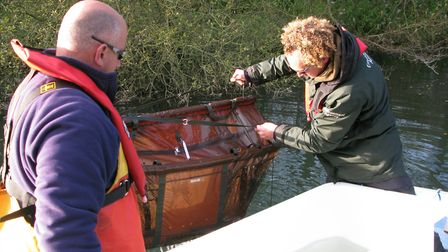 Steve Lane and John Wall lift a basket containing pike on the River Bure near Wroxham. Picture: ANDR