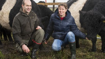 David and Nicola Chapman with their Belted Galloway herd at Carr Farm, Burgh St Peter. Picture: Nick