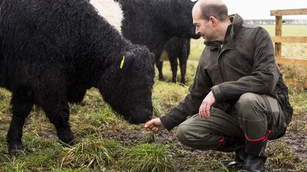 """Carr Farm in Burgh St Peter has become the first """"Pasture For Life"""" certified enterprise in Norfolk."""
