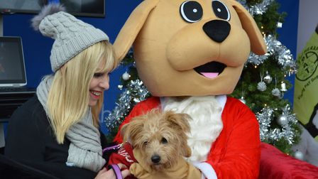 Santa's Grotto for Dogs will be returning to The Forum in Norwich. Picture: THE FORUM