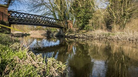 The Wensum was one of two Norfolk rivers found to be contaminated with neonicotinoid pesticides. Pic