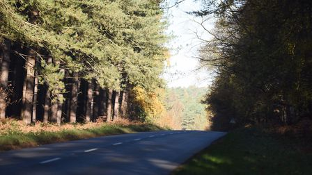 A airman from RAF Lakenheath died after a collision on the B1106 near Elveden. Picture: ARCHANT