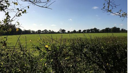 The land between Wangford and Reydon that could be earmarked for possible gravel extraction. Picture