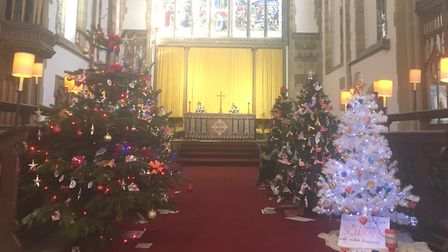 The trees leading up to the West Window. Picture: Eleanor Pringle