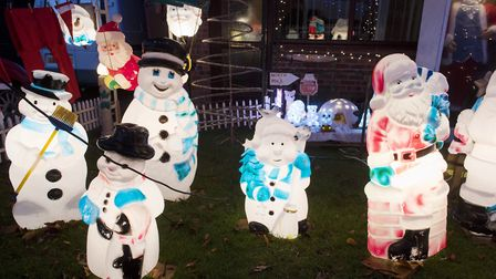 Sue Sanford is raising money for Cancer Research with her Christmas lights.Picture: Nick Butcher