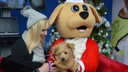 Dogs are invited to meet Santa Woof-Woof at the Santa's Grotto For Dogs at the Forum in Norwich on D