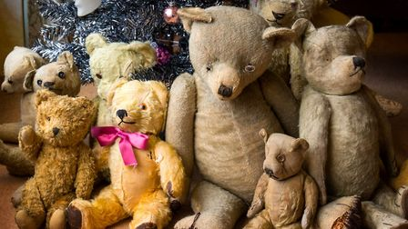 Much-loved and much-cuddled: The bear assistants at Mike Hicks' Stalham business.