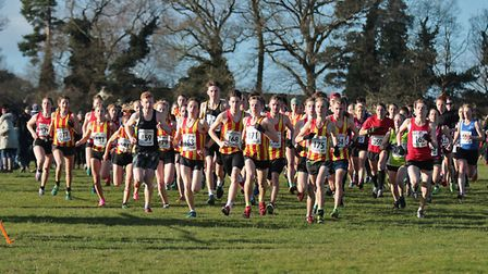 The start of the Under 17 boys and Senior ladies race at the Norfolk Cross Country Championships. Pi