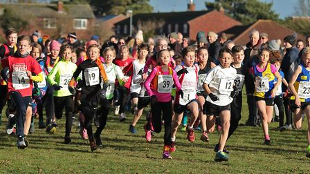 The start of the Under-11s race at the Norfolk Cross Country Championships. Picture: Tony Payne