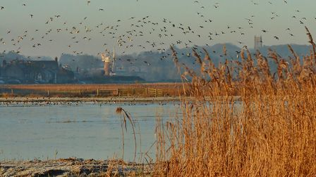 A view across to Cley Mill in the early morning sunlight, Picture: Elizabeth Dack