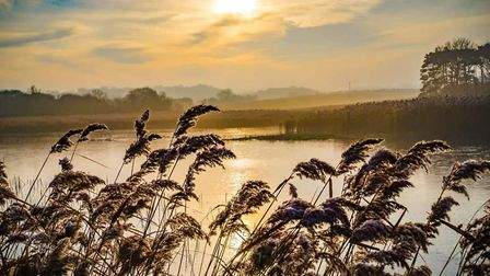 Early morning at Cley marshes. Picture: Brad Damms